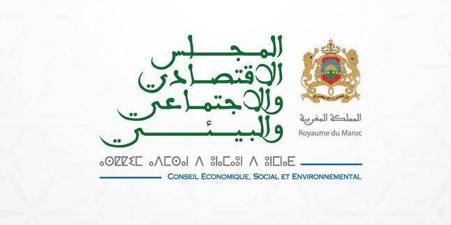 Conseil Economique Social et Environnemental (CESE) Maroc